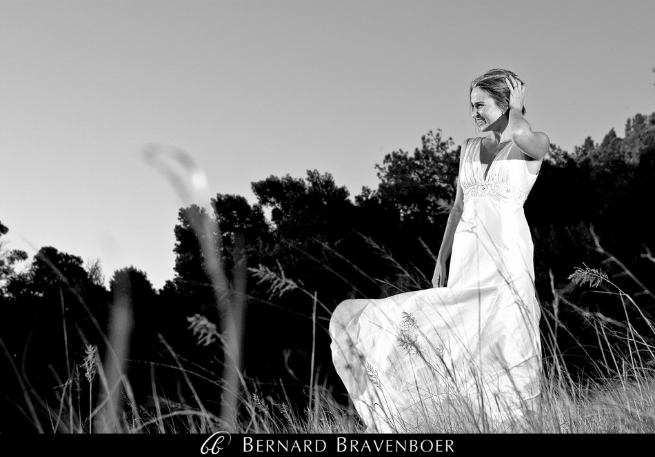 Miranda Gouws Franschoek Wedding 215