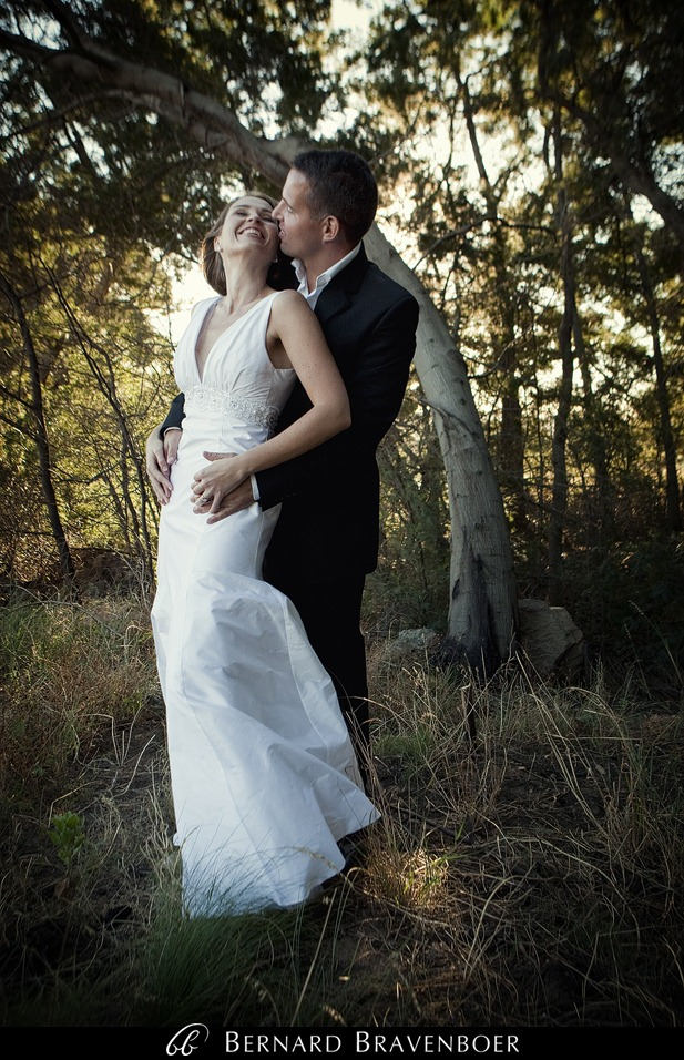 Miranda Gouws Franschoek Wedding 260