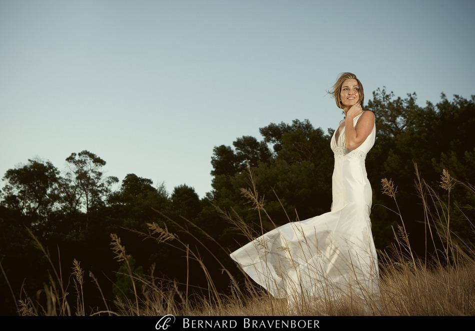 Miranda Gouws Franschoek Wedding 280
