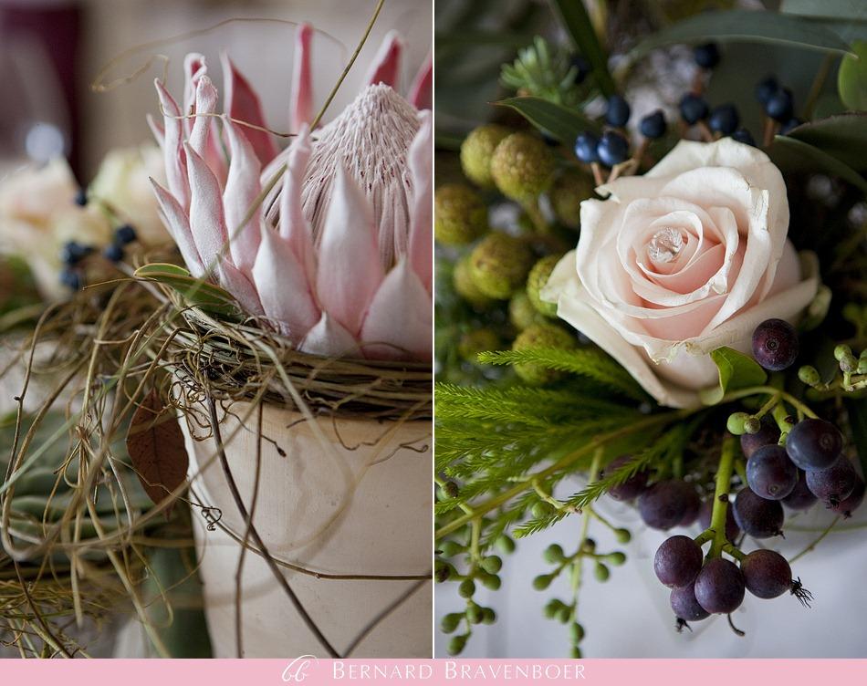 Miranda Gouws Franschoek Wedding 390