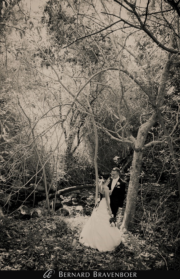 Wedding Ada Shimal Kirstenbosch 330