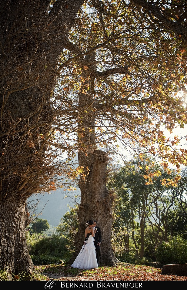Wedding Ada Shimal Kirstenbosch 350