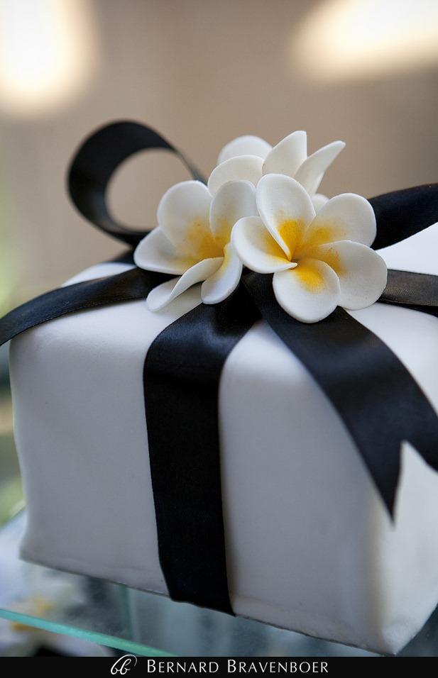 Wedding Ada Shimal Kirstenbosch 510