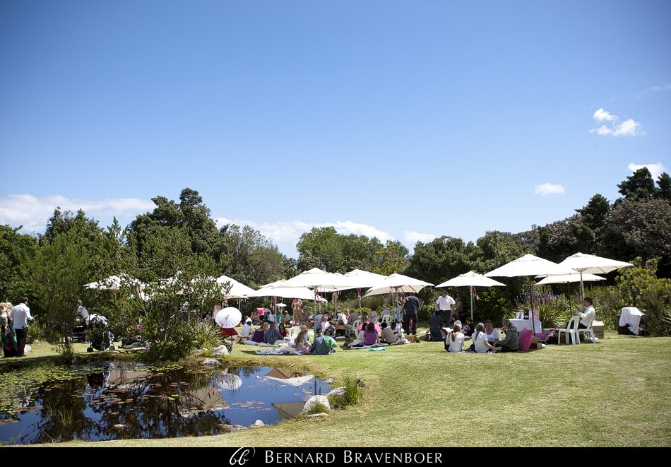 Bravenboer Wedding Photographer Stellenbosch Marius Carley Harold Porter 510