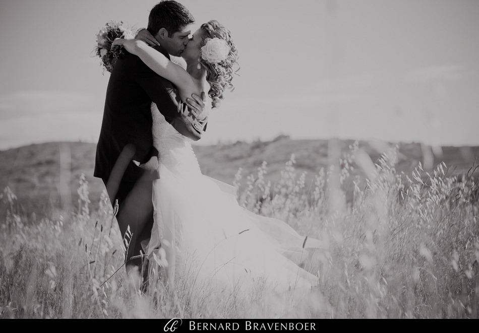 Bravenboer Riette Wedding 117