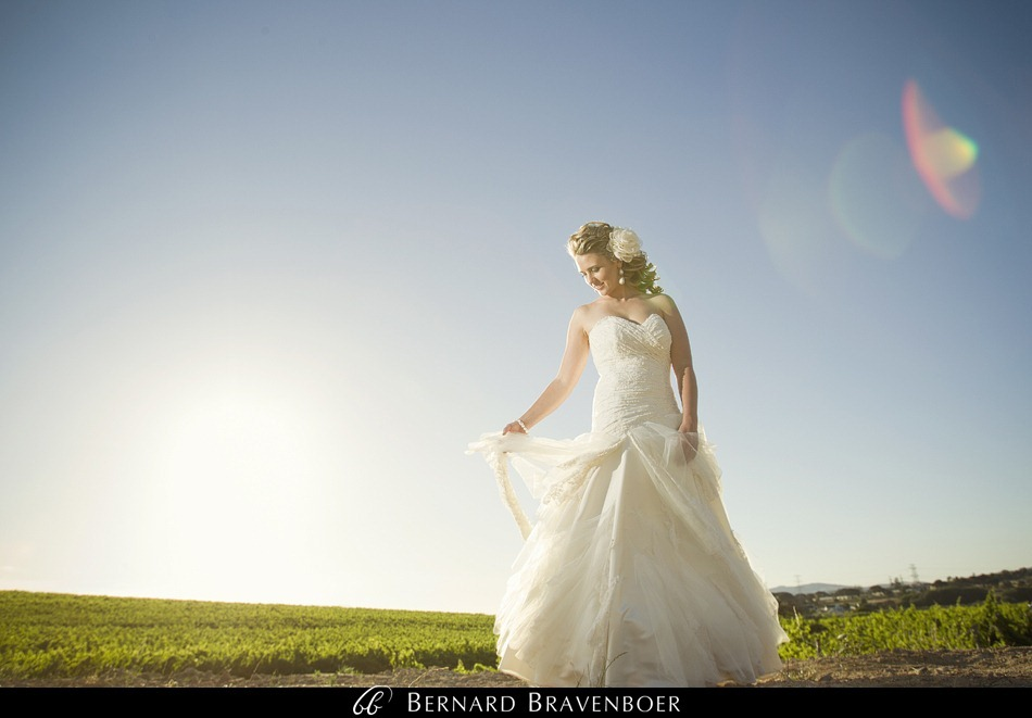 Bravenboer Riette Wedding 130