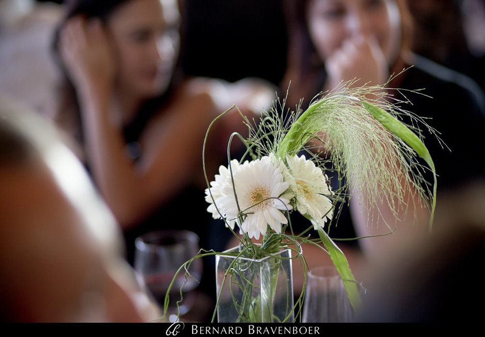 Bravenboer Erich Vanessa Wedding Hermanus La Vierge 0027