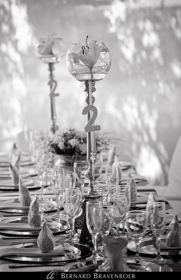 Bravenboer Weddings Stellenbosch  0008