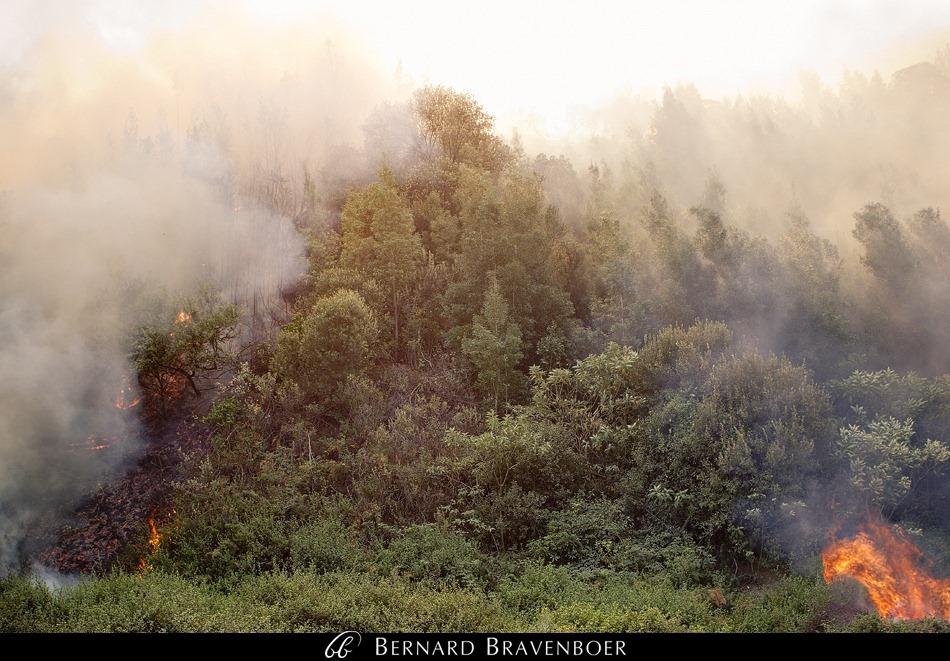 Bernard Bravenboer Helderberg Fire Somerset West 0003