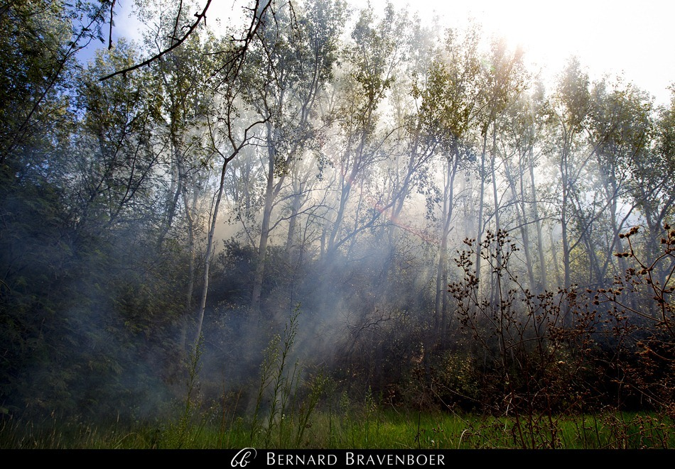 Bernard Bravenboer Helderberg Fire Somerset West 0008