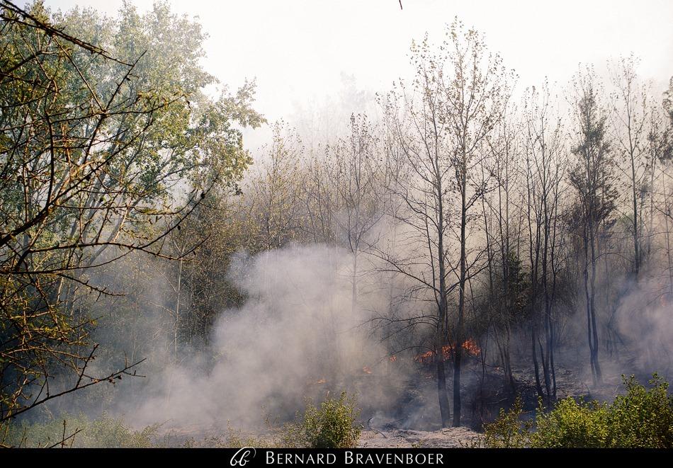 Bernard Bravenboer Helderberg Fire Somerset West 0014