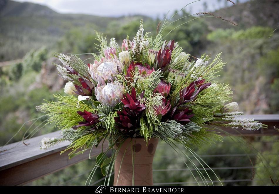 Sandra Brandon Bravenboer Botlierskop Game Reserve Wedding 0010