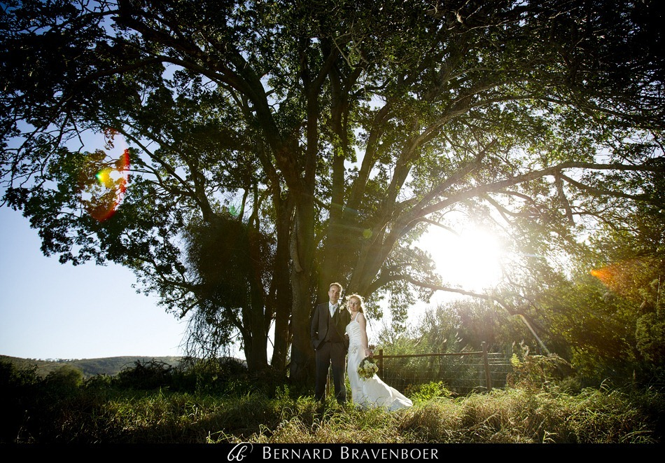 Sandra Brandon Bravenboer Botlierskop Game Reserve Wedding 0032