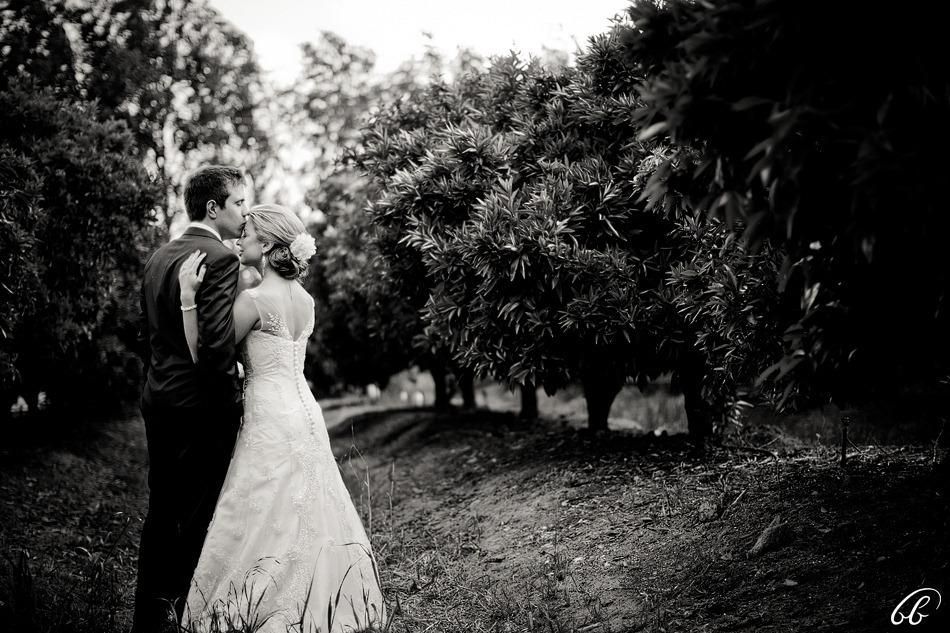 Bravenboer Paarl Wedding Photos 040